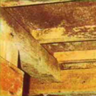 image-shoeicorporation-termite-prevention12-compressor
