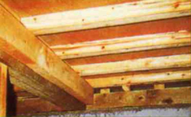 termite-prevention02
